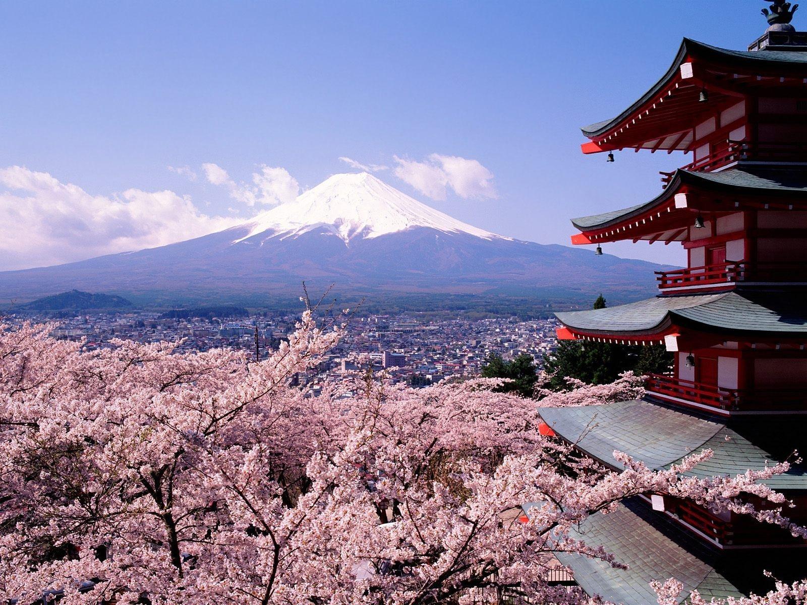 wycieczka-do-japonii-4